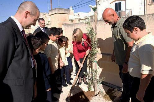 2011-10-27austhighcomm-tree-planting