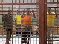 ayslum-seekers-in-detention